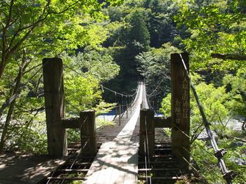 夢の吊り橋.jpg