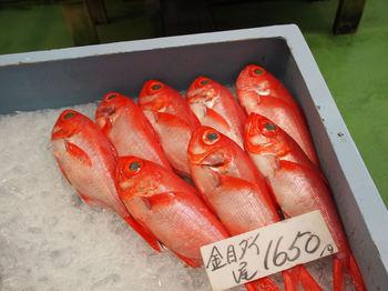 高級魚金目鯛.JPG